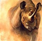 """05 - De los afrodisíacos """"clásicos"""", dos de los más famosos de la historia son el polvo de cuernos de rinoceronte y la mandrágora, que, en tiempos más recientes, no han podido sustentar científicamente la fama de la que venían precedidos y simplemente los análisis los han desacreditado y han caído en el olvido."""