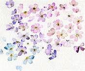 20 - En ese momento una claridad azul se deslizó por la ventana abierta que daba al jardín. La extraña luz, en medio del salón y en una multicolor metamorfosis se fue convirtiendo armoniosamente en diminutos pétalos de jazmín, y el embrujo brillante de las aromáticas flores fue envolviendo a los asistentes, al tiempo que los inmovilizaba.