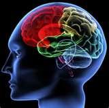 03 - La sugestión (el moderno concepto del poder de la mente) también puede explicar el éxito indiscutible de muchos y extraños preparados afrodisíacos, que encontramos en todas las civilizaciones del planeta.